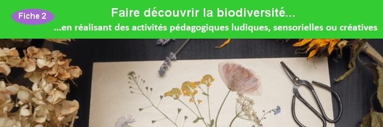 Faire découvrir la biodiversité en réalisant des activités pédagogiques